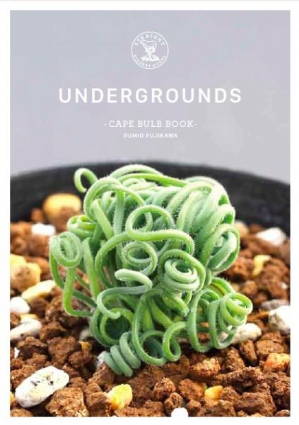 UNDERGROUNDS -CAPE BULB BOOK- FUMIO FUJIKAWA