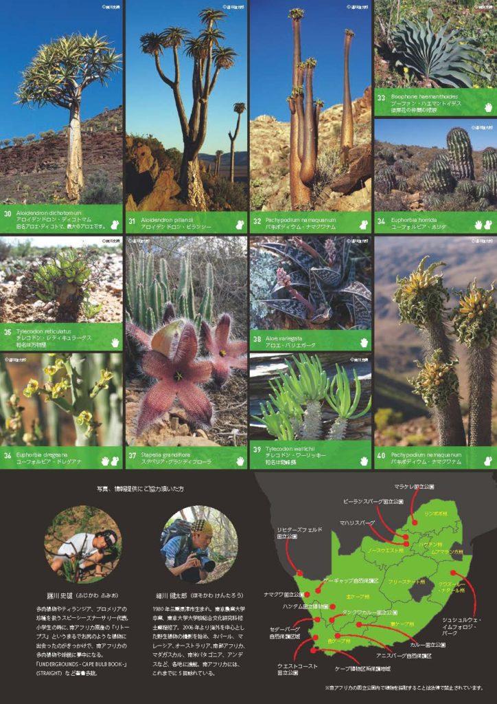 南アフリカツアーパンフレット_ページ_3