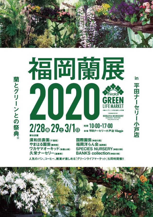 平田ナーサリー福岡蘭展2020
