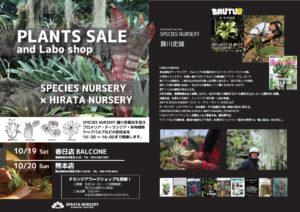 PLANTS SALE and Labo shop 平田ナーセリー @ 春日店Balcone