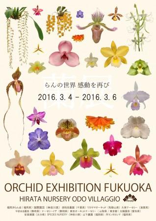 ORCHID EXHIBITION FUKUOKA @ 福岡市 | 福岡県 | 日本