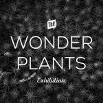 WONDER_PLANTS_ex_pop