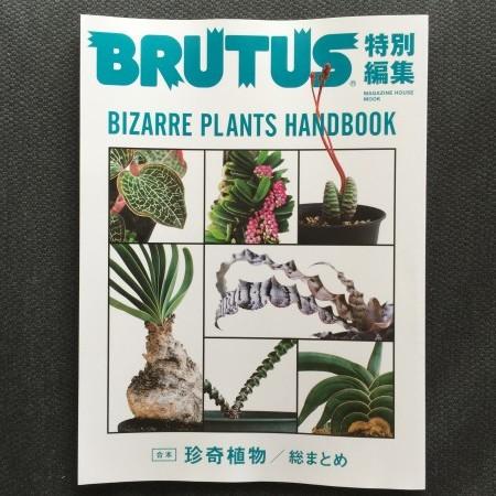BRUTUS合本・珍奇植物 総まとめ