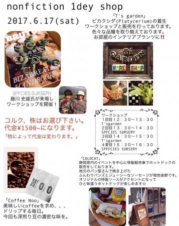 ノンフィクション(静岡)にて植物の販売ティランジア着生ワークショップを行います @ Non Fiction | 富士市 | 静岡県 | 日本