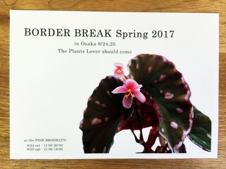 BORDER BREAK Spring2017 @ PINE BROOKLYN | 大阪市 | 大阪府 | 日本
