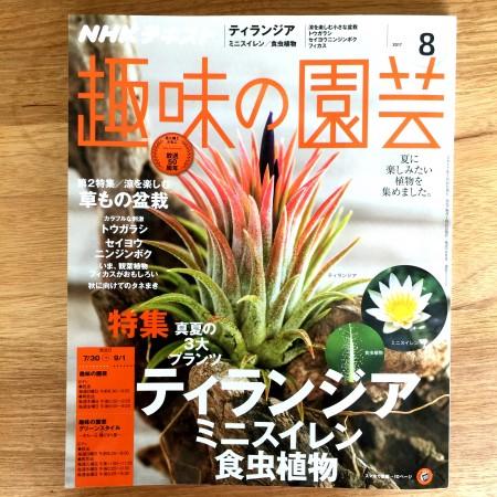 NHK 趣味の園芸8月号