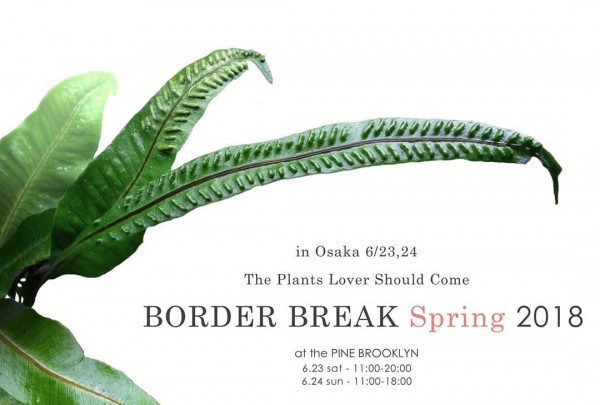 BORDER BREAK Spring2018 @ PINE BROOKYN | 大阪市 | 大阪府 | 日本